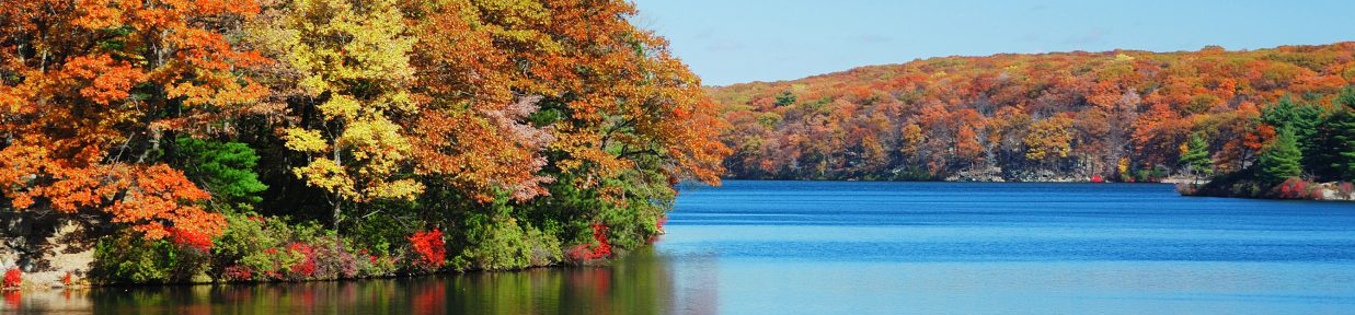 Fall-Colors-6